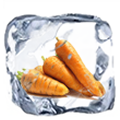IQF FROZEN CARROT -